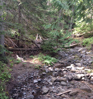 hiking-in-cle-elum-wa