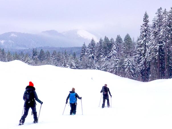 cross,country,skiing,&,snowshoeing,cle,elum