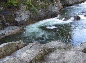 cooper,river,trail,cle,elum
